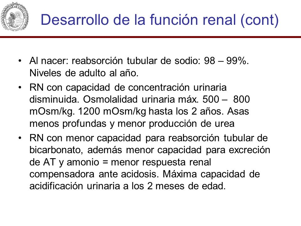 Desarrollo de la función renal (cont)