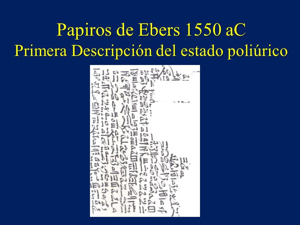 Papiros de Ebers 1550 aC Primera Descripción del estado poliúrico