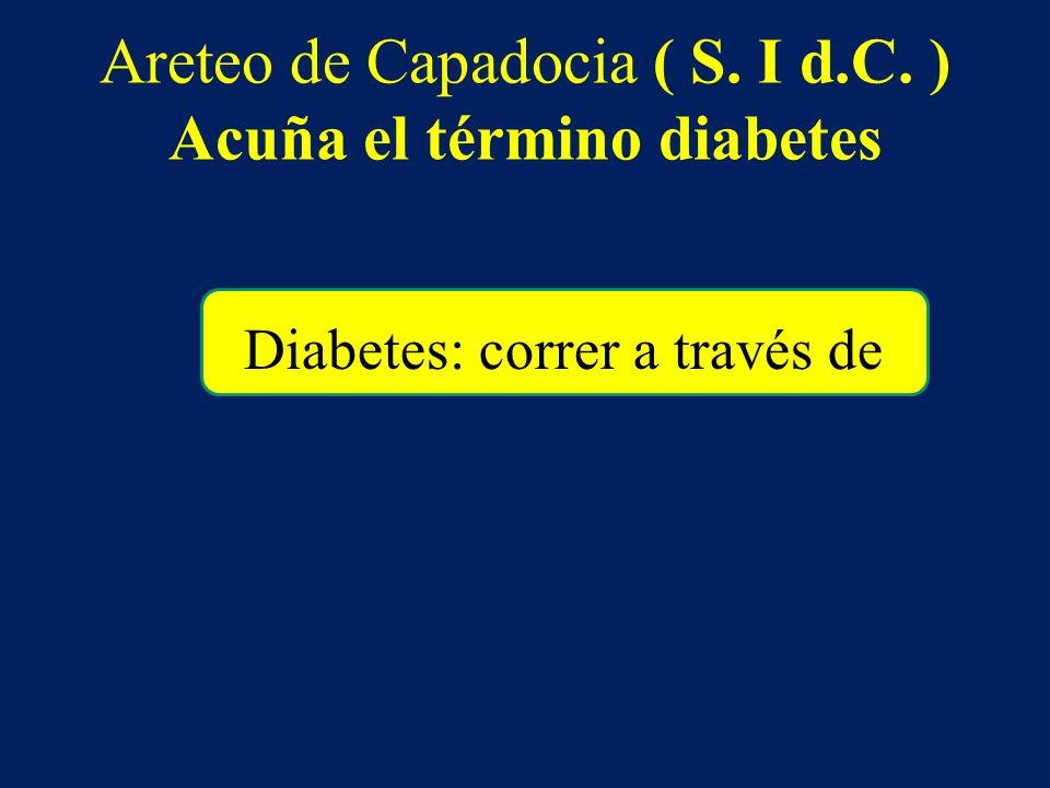 Areteo de Capadocia ( S. I d.C. ) Acuña el término diabetes