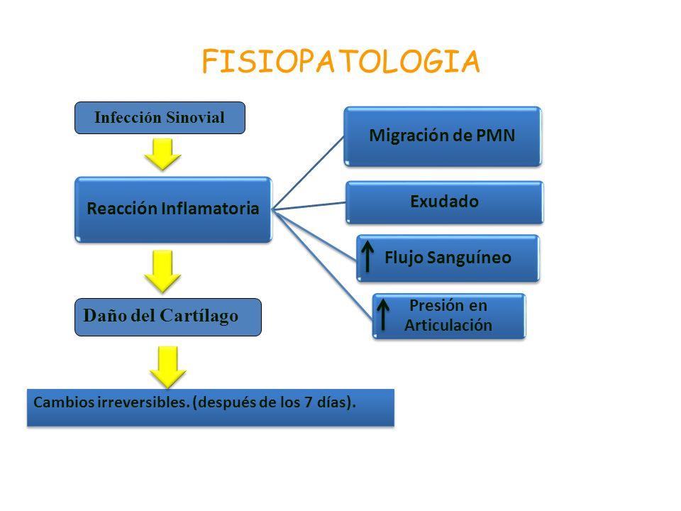 Reacción Inflamatoria Presión en Articulación
