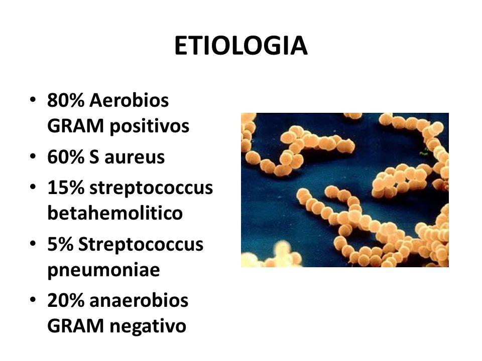 ETIOLOGIA 80% Aerobios GRAM positivos 60% S aureus