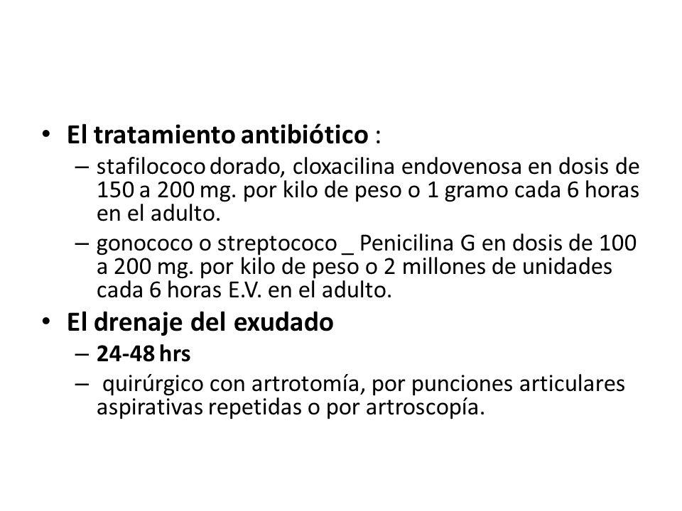El tratamiento antibiótico :