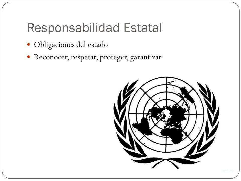 Responsabilidad Estatal