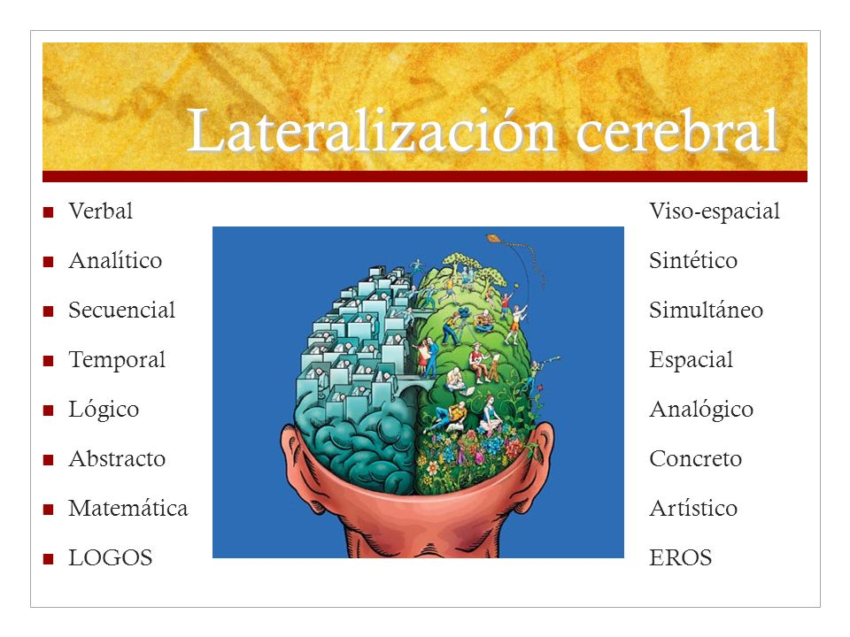 Lateralización cerebral