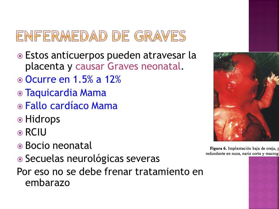 Enfermedad de GravesEstos anticuerpos pueden atravesar la placenta y causar Graves neonatal. Ocurre en 1.5% a 12%