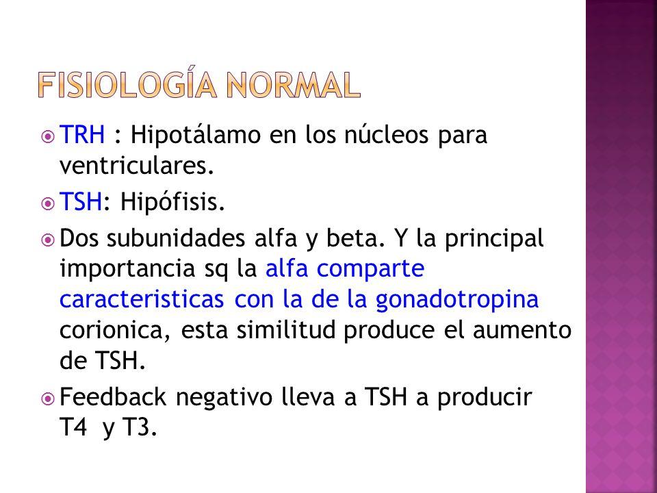 Fisiología normal TRH : Hipotálamo en los núcleos para ventriculares.