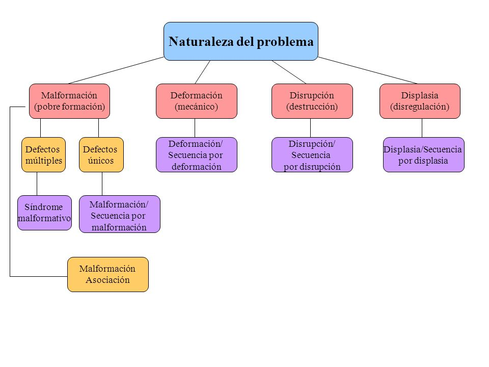 Naturaleza del problema