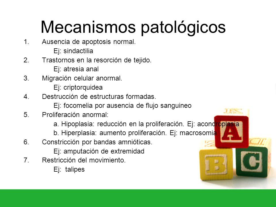 Mecanismos patológicos