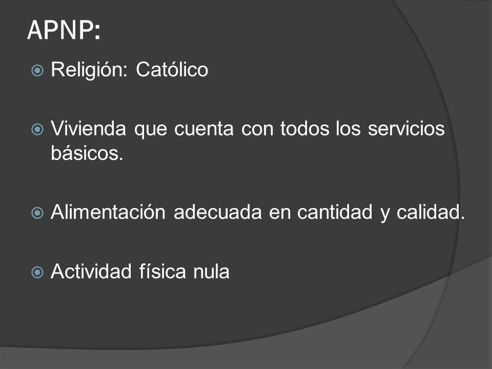 APNP: Religión: Católico