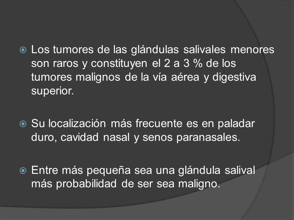 Los tumores de las glándulas salivales menores son raros y constituyen el 2 a 3 % de los tumores malignos de la vía aérea y digestiva superior.