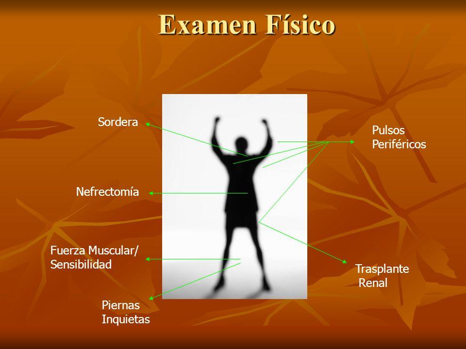 Examen Físico Sordera Pulsos Periféricos Nefrectomía Fuerza Muscular/