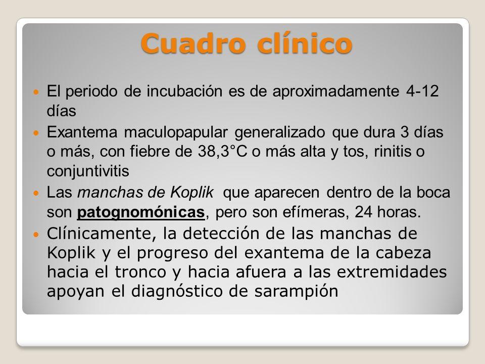 Cuadro clínico El periodo de incubación es de aproximadamente 4-12 días.