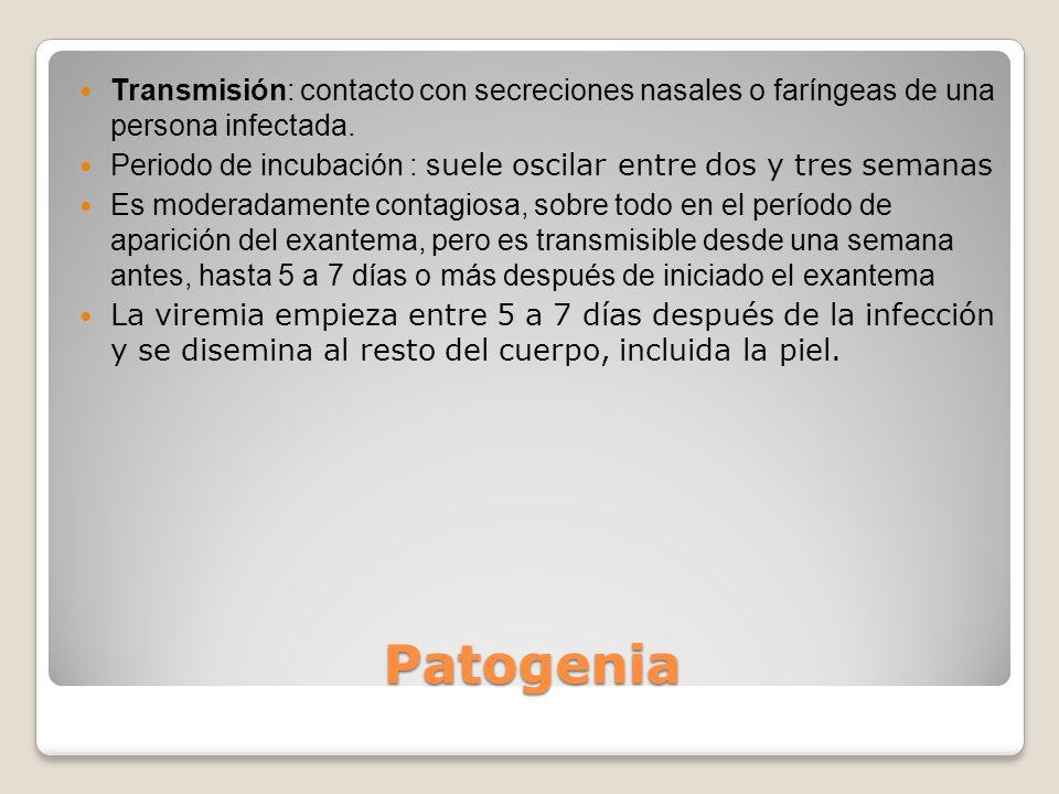 Transmisión: contacto con secreciones nasales o faríngeas de una persona infectada.