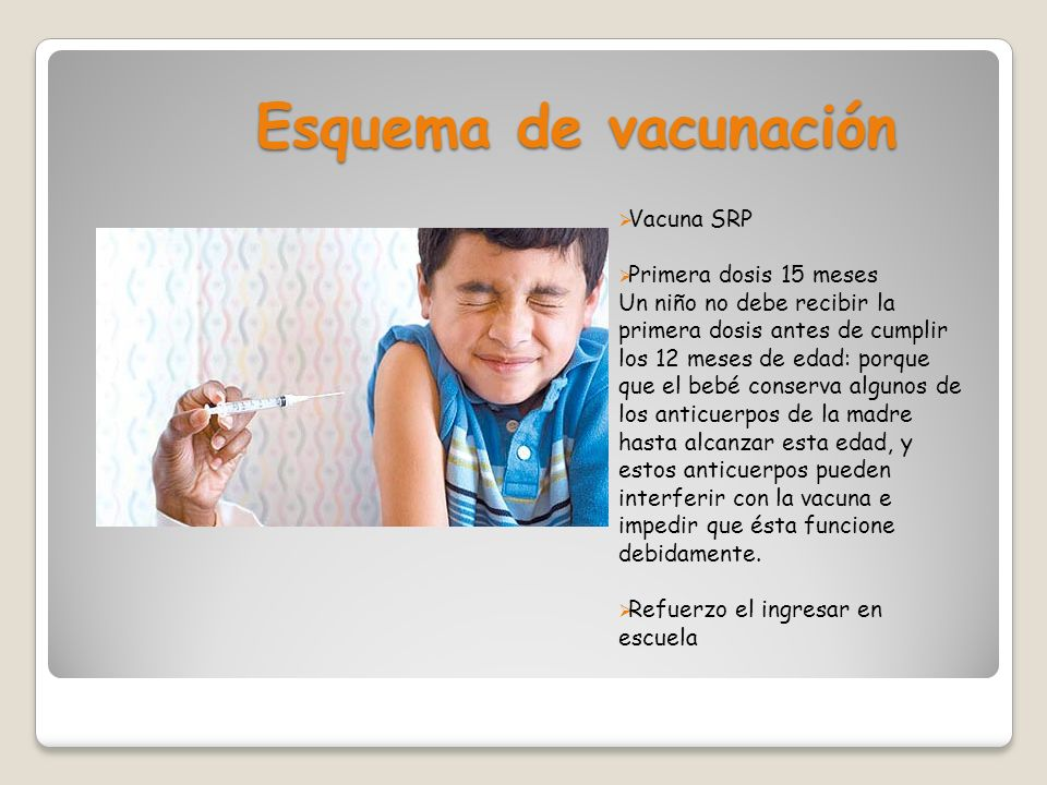 Esquema de vacunación Vacuna SRP Primera dosis 15 meses