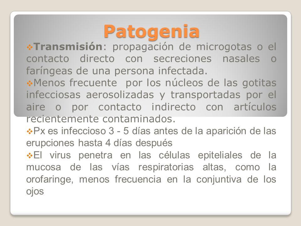 Patogenia Transmisión: propagación de microgotas o el contacto directo con secreciones nasales o faríngeas de una persona infectada.