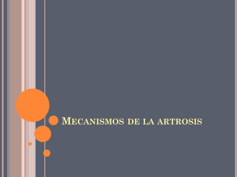 Mecanismos de la artrosis