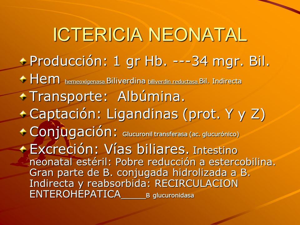 ICTERICIA NEONATAL Producción: 1 gr Hb. ---34 mgr. Bil.