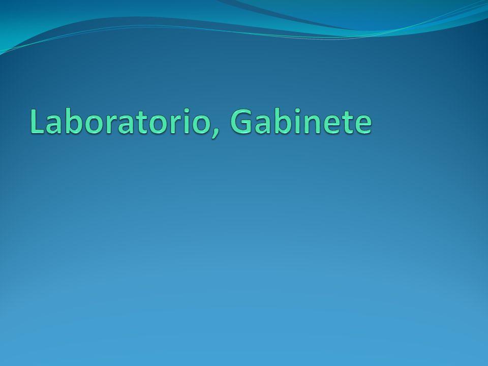 Laboratorio, Gabinete