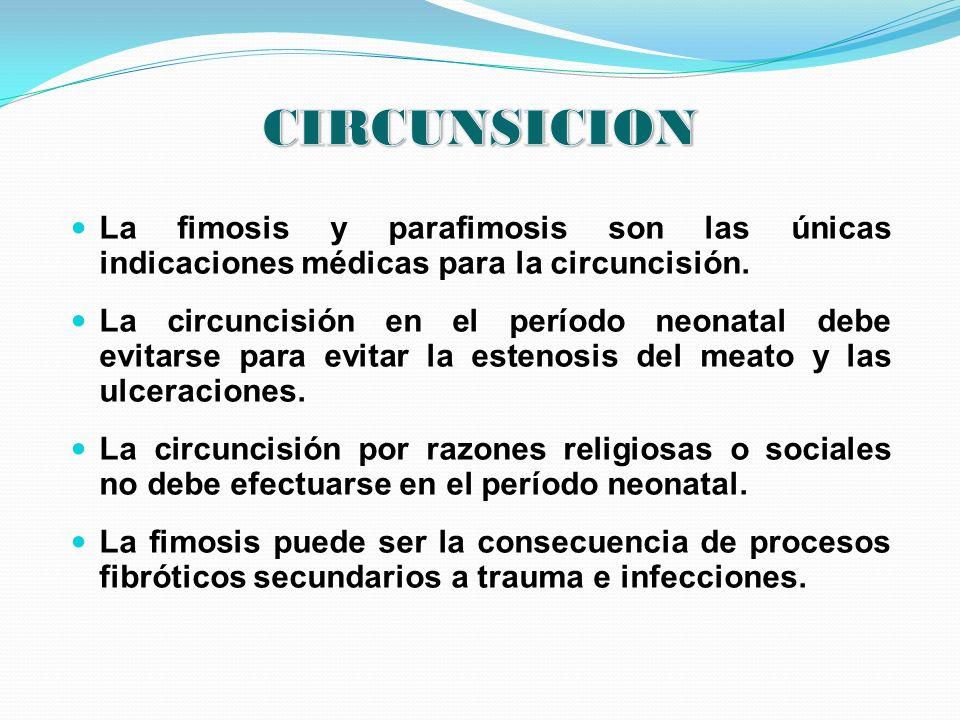 CIRCUNSICION La fimosis y parafimosis son las únicas indicaciones médicas para la circuncisión.