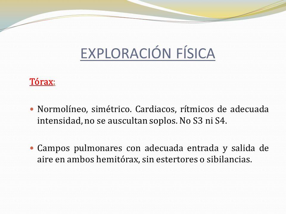 EXPLORACIÓN FÍSICA Tórax: