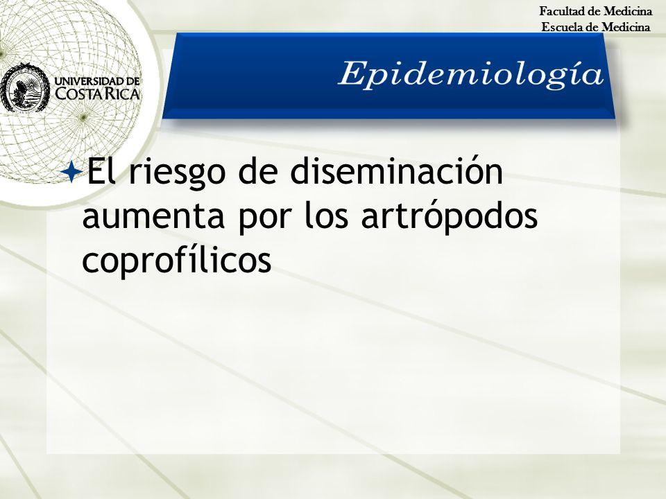 Facultad de Medicina Escuela de Medicina. Epidemiología.