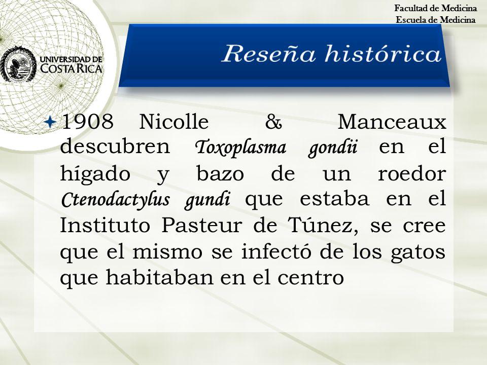 Facultad de Medicina Escuela de Medicina. Reseña histórica.