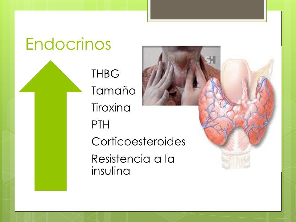 Endocrinos Tamaño THBG Tiroxina PTH Resistencia a la insulina