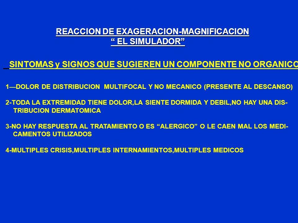 REACCION DE EXAGERACION-MAGNIFICACION EL SIMULADOR