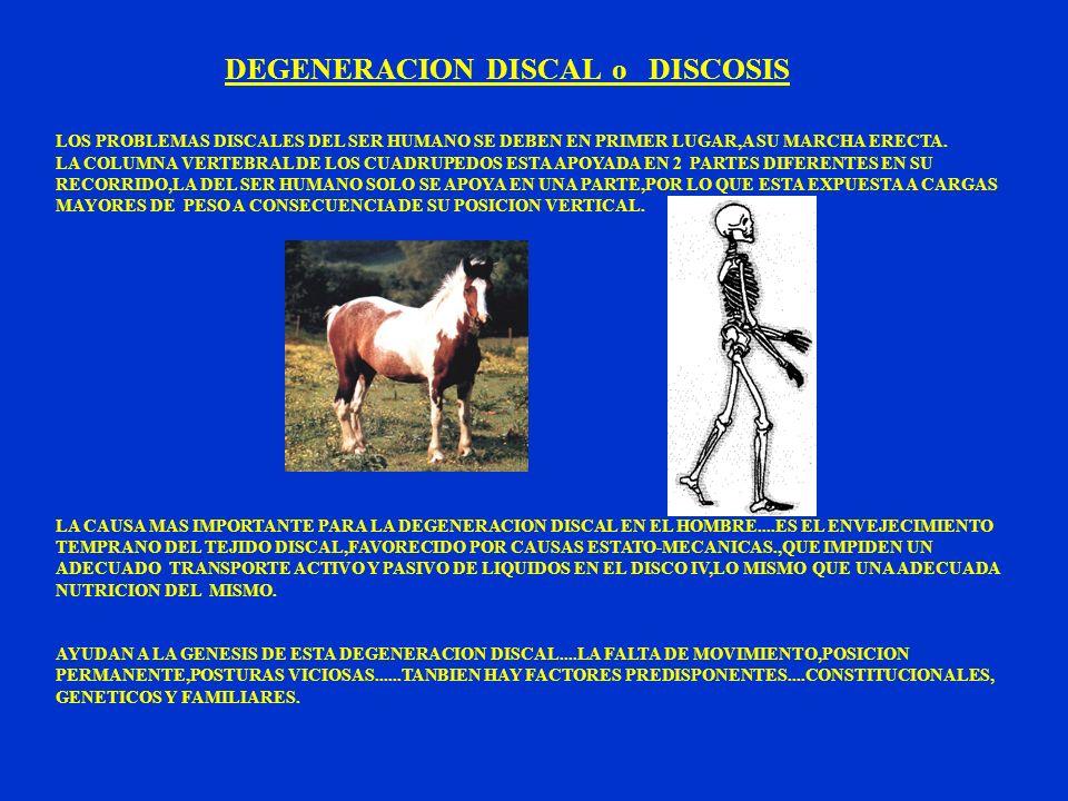 DEGENERACION DISCAL o DISCOSIS