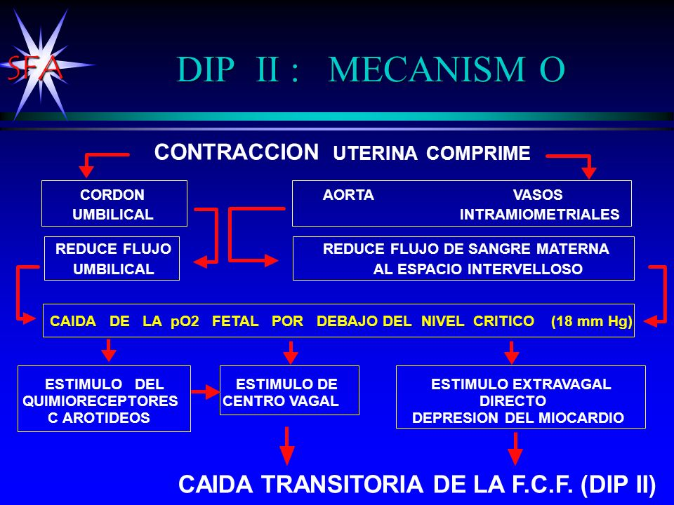DIP II : MECANISM O CAIDA TRANSITORIA DE LA F.C.F. (DIP II)