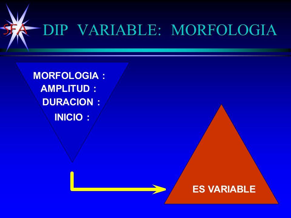 DIP VARIABLE: MORFOLOGIA