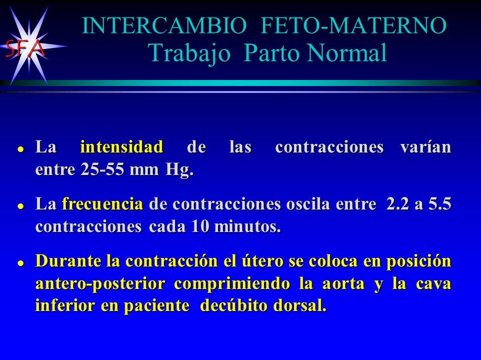INTERCAMBIO FETO-MATERNO Trabajo Parto Normal