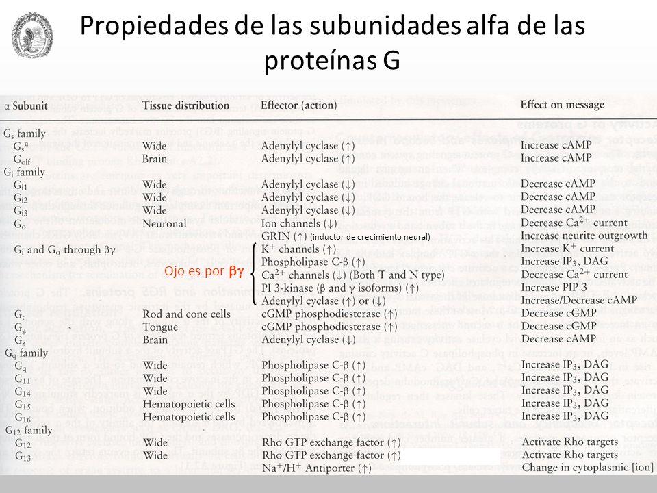 Propiedades de las subunidades alfa de las proteínas G