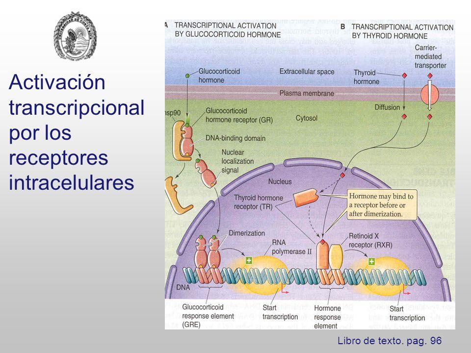 Activación transcripcional por los receptores intracelulares