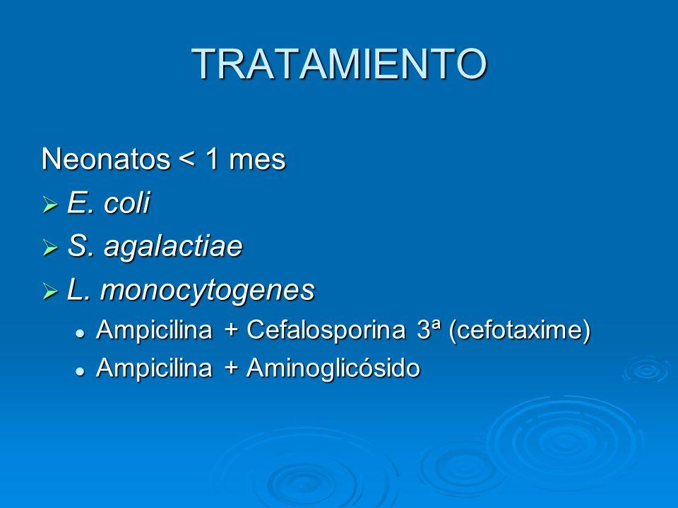TRATAMIENTO Neonatos < 1 mes E. coli S. agalactiae L. monocytogenes