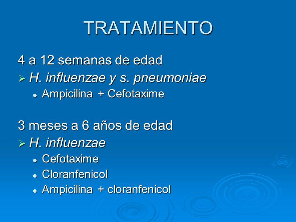 TRATAMIENTO 4 a 12 semanas de edad H. influenzae y s. pneumoniae