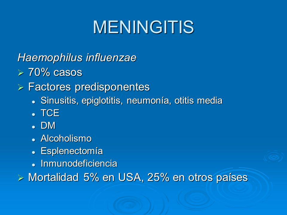 MENINGITIS Haemophilus influenzae 70% casos Factores predisponentes