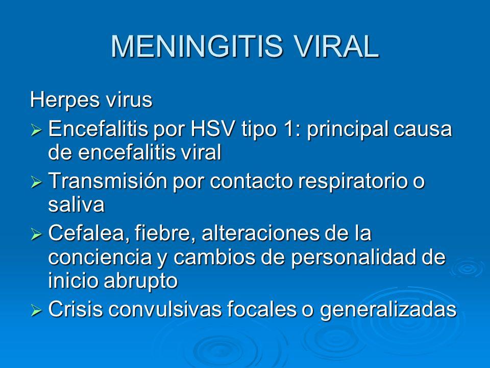 MENINGITIS VIRAL Herpes virus