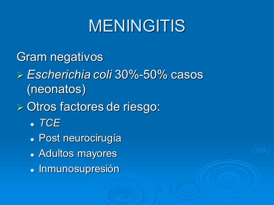 MENINGITIS Gram negativos Escherichia coli 30%-50% casos (neonatos)
