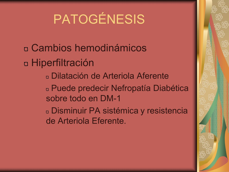 PATOGÉNESIS Cambios hemodinámicos Hiperfiltración