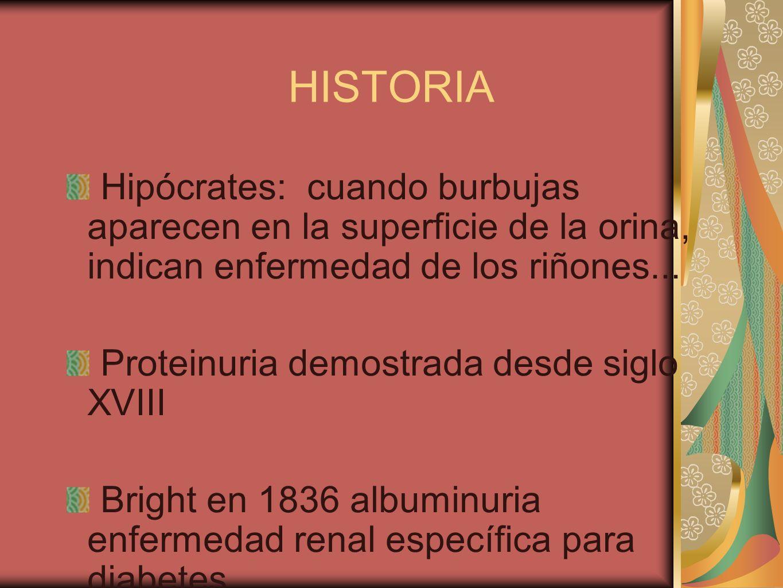 HISTORIAHipócrates: cuando burbujas aparecen en la superficie de la orina, indican enfermedad de los riñones...