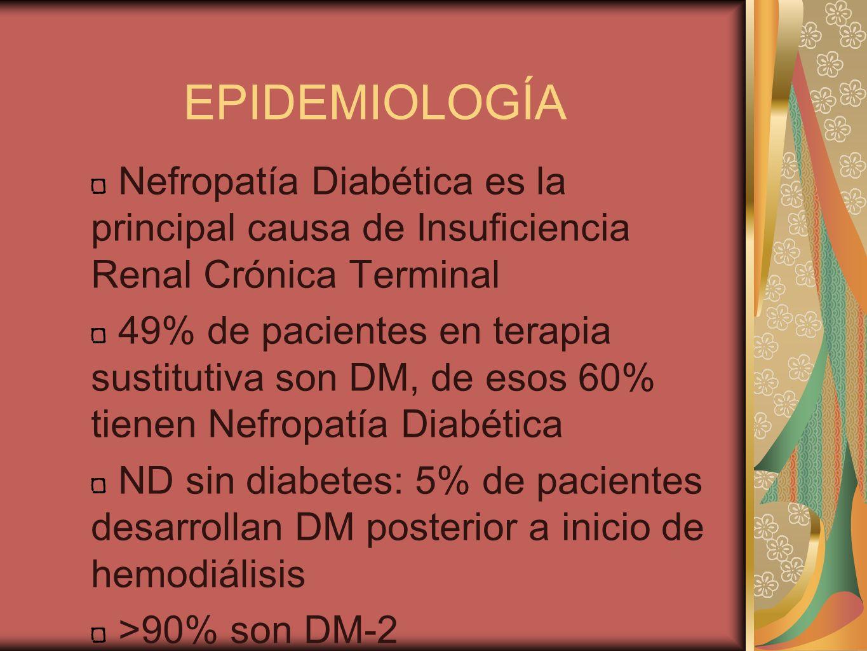 EPIDEMIOLOGÍA Nefropatía Diabética es la principal causa de Insuficiencia Renal Crónica Terminal.