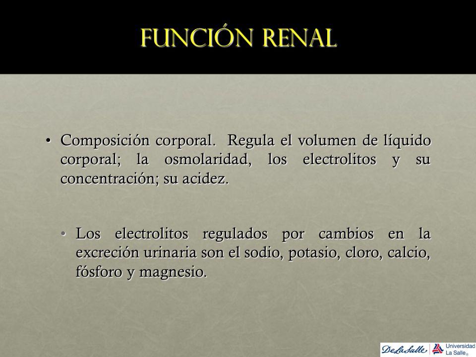 Función renal Composición corporal. Regula el volumen de líquido corporal; la osmolaridad, los electrolitos y su concentración; su acidez.