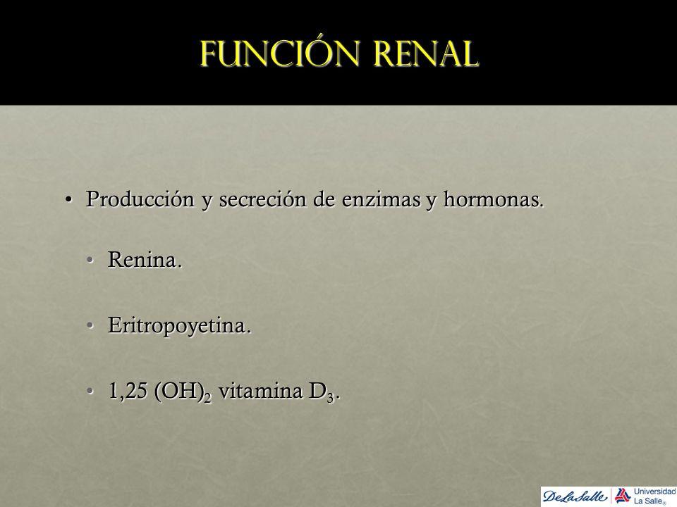 Función renal Producción y secreción de enzimas y hormonas. Renina.