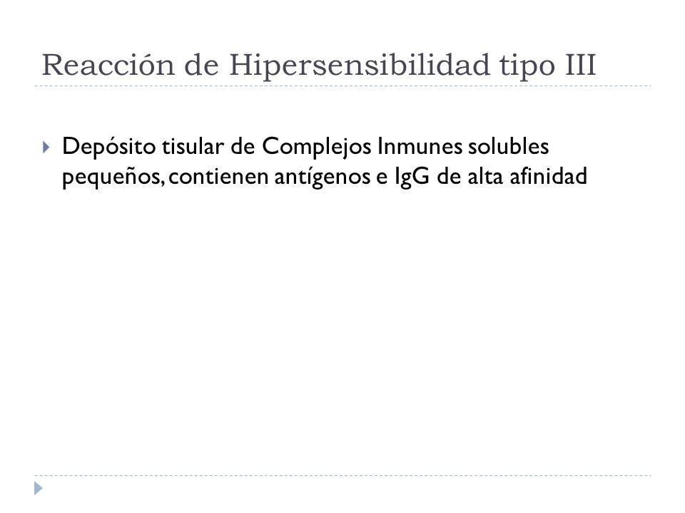 Reacción de Hipersensibilidad tipo III