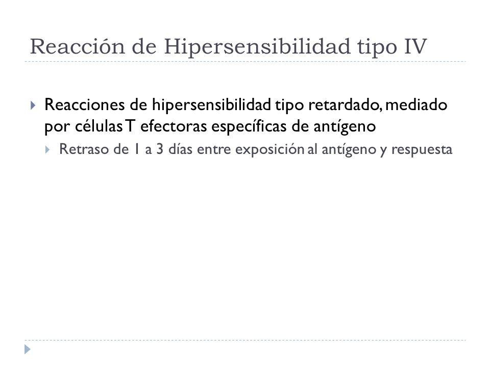 Reacción de Hipersensibilidad tipo IV