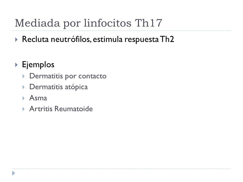 Mediada por linfocitos Th17