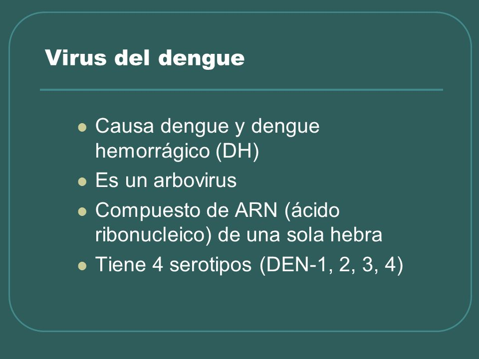 Virus del dengue Causa dengue y dengue hemorrágico (DH)