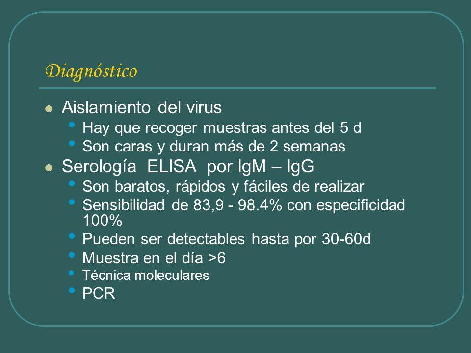 Diagnóstico Aislamiento del virus Serología ELISA por IgM – IgG