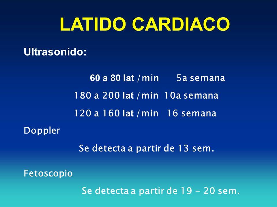 LATIDO CARDIACO Ultrasonido: 60 a 80 lat /min 5a semana